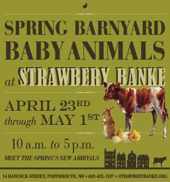 Strawbery Banke Baby Animals