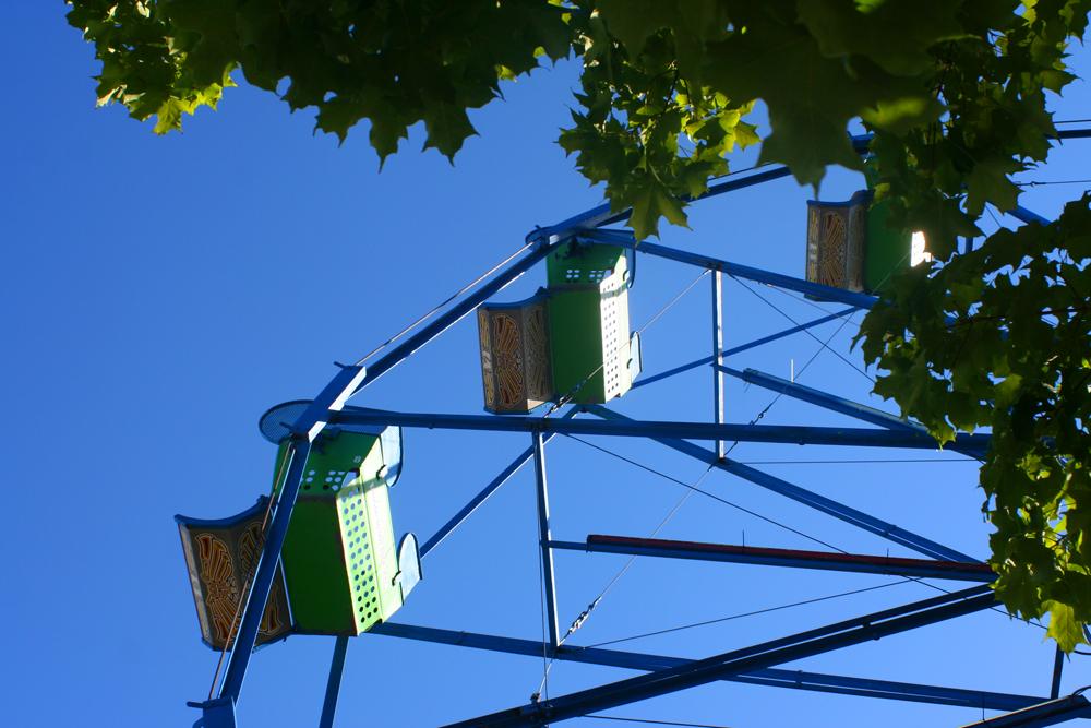 Ferris Wheel York's Wild Kingdom