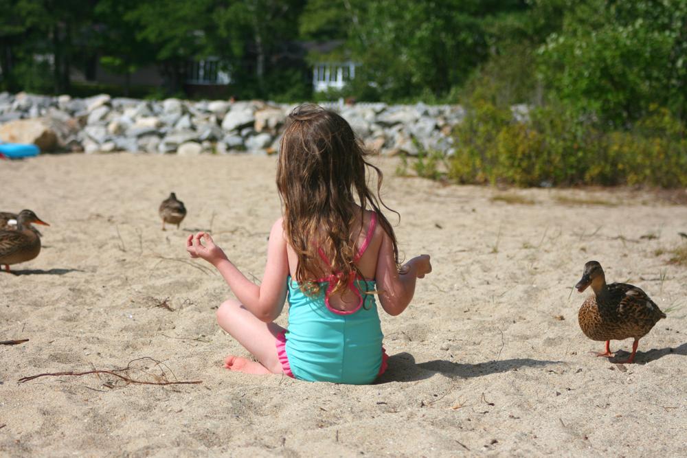 Ellis Pond Meditation